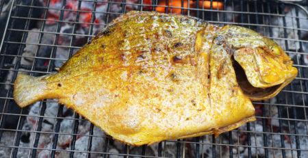cá chim nướng